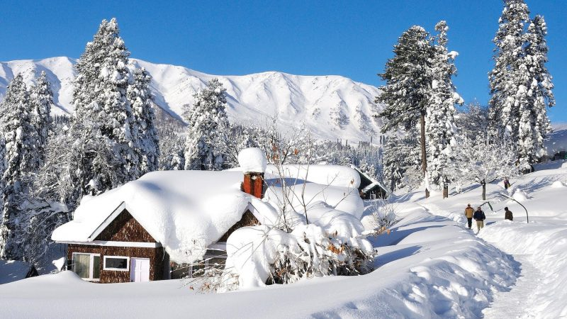 Discover What Makes Gulmarg Every Couple's Favourite Destination!