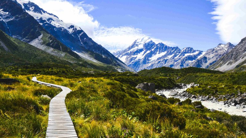 Go on a Fascinating Road-Trip in New Zealand