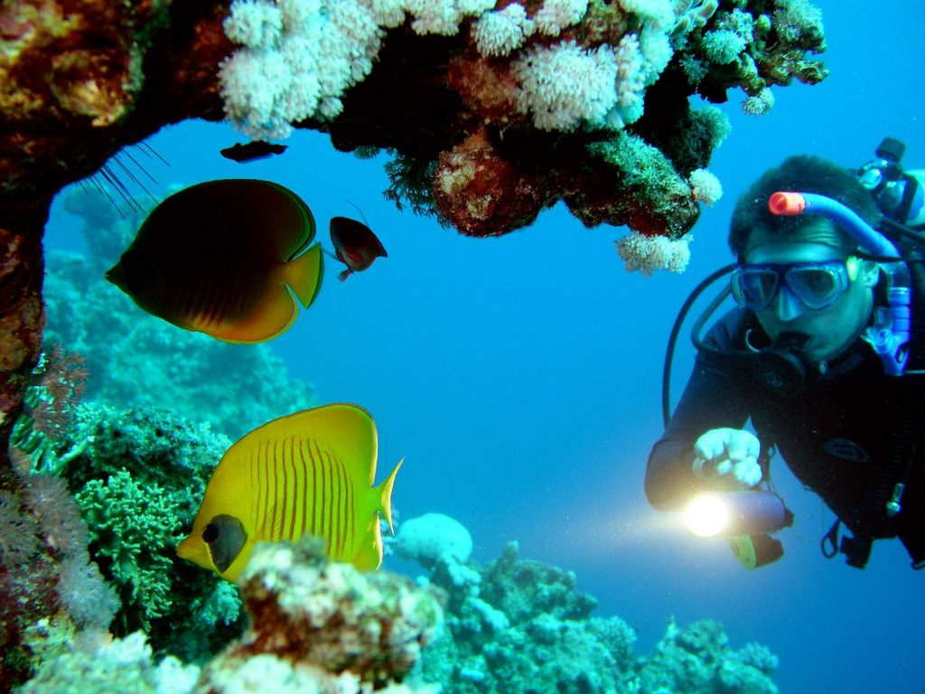 Goa's Most Exclusive Water Sports Scuba Diving