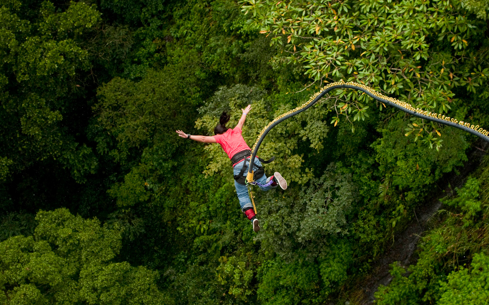 Try the Giant Swing in Rishikesh