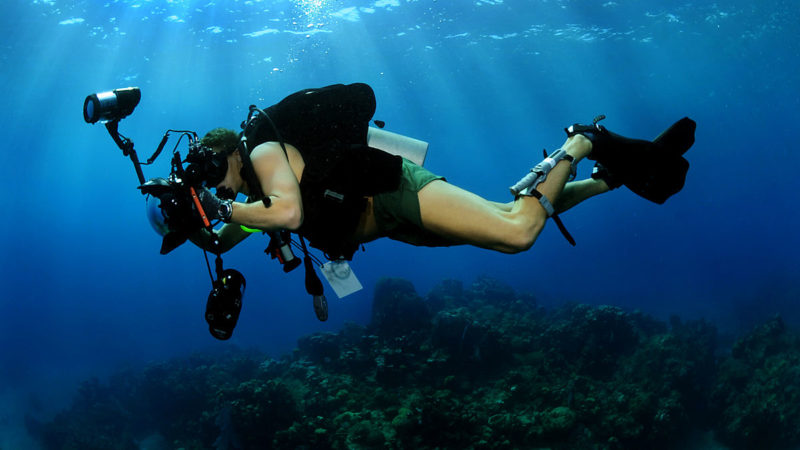 Explore the World Beneath The Waters With Underwater Diving
